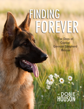 Finding Forever by Dobie Houson - Book Cover image