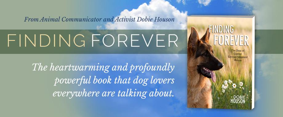 finding-forever-slide1