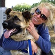 Seven Myths About Dog Adoption